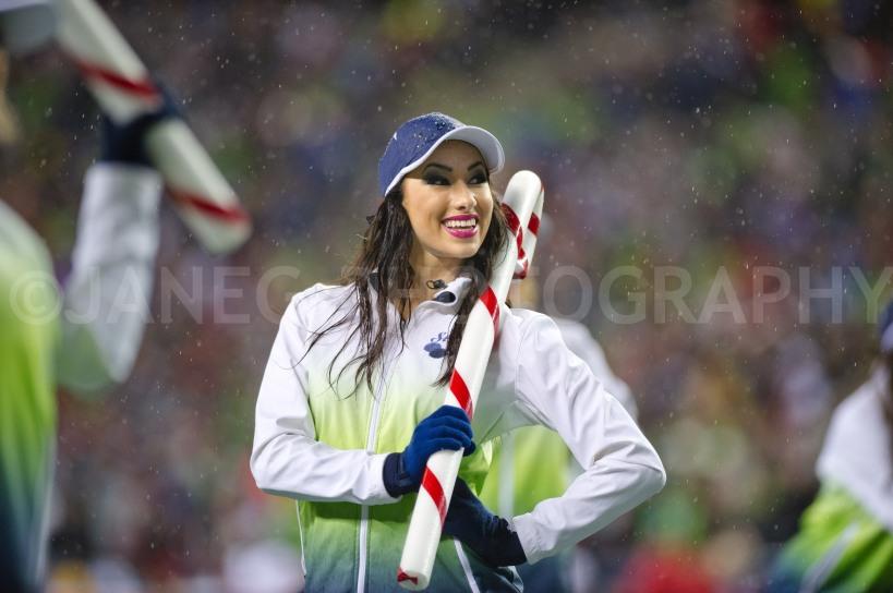 20121223Seahawks_49ers-149