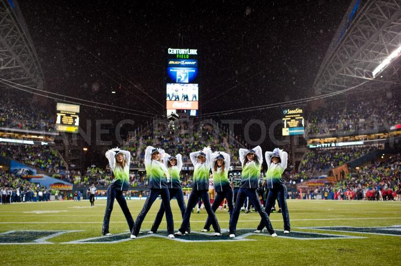 20121223Seahawks_49ers-2