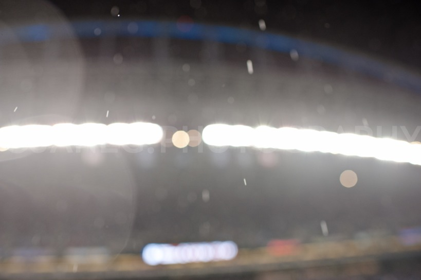 20121223Seahawks_49ers-4
