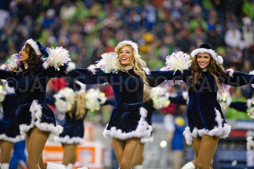 20121223Seahawks_49ers-79